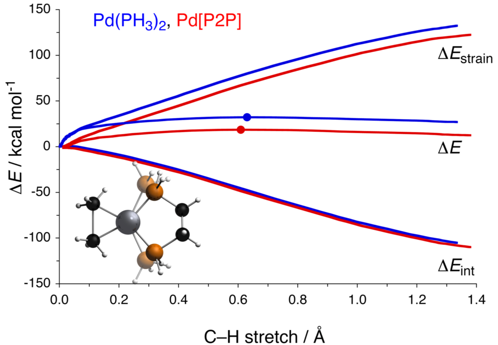 Pd catalyzed C-C bond activation: the Activation Strain Model