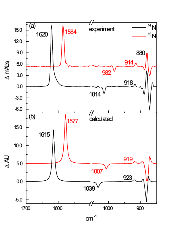 Calculated and exp. IR spectrum and 15N isotope shift osmate