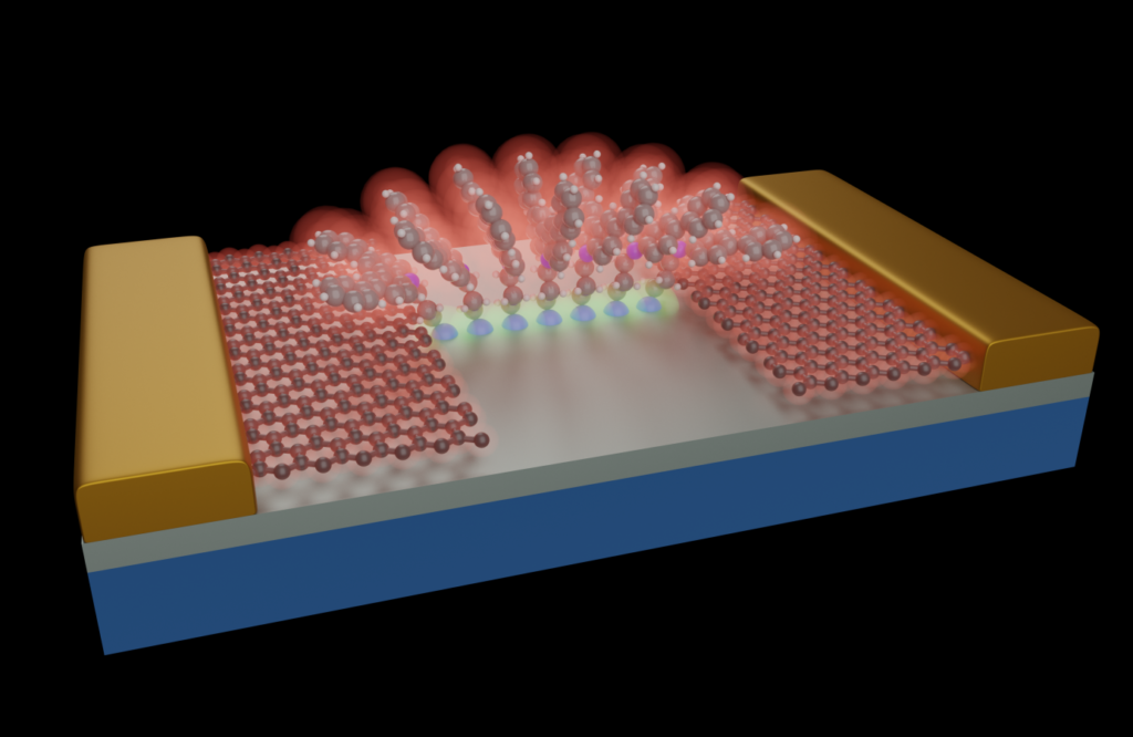 Molecular Electronics with graphene electrodes