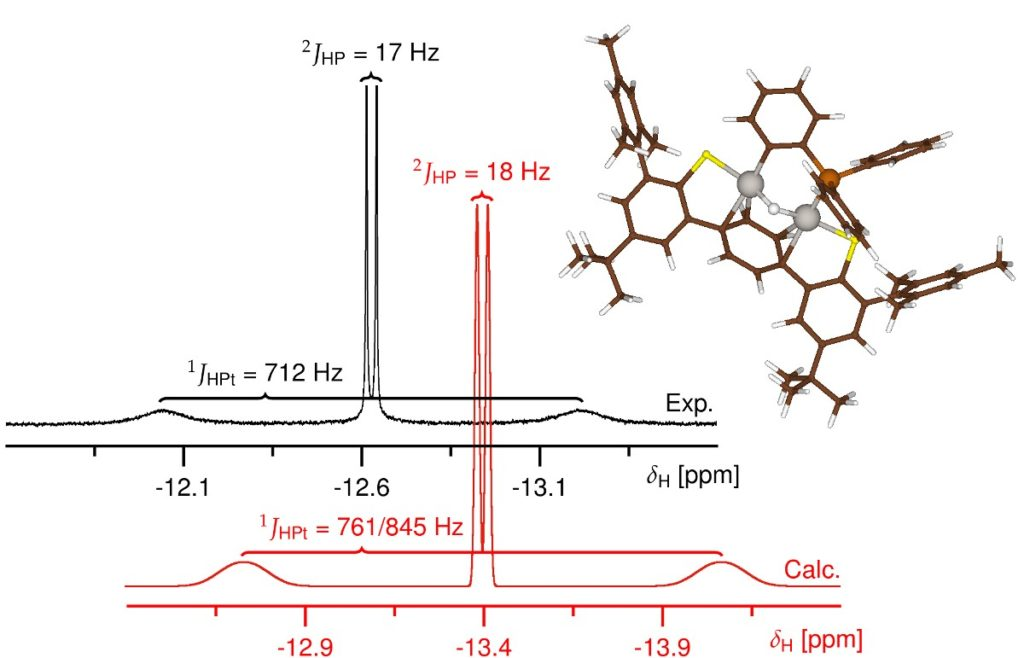 Pt-H-Pt complex NMR spectra compare well with calculations