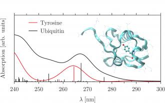 TDDFTB_protein-330x206