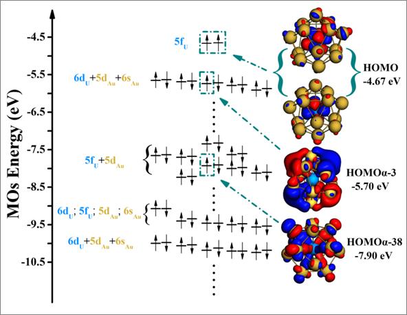 orbital level diagram U capsulated in Au14 nanoparticles