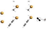 EDA bonding analysis transition metal catalysis
